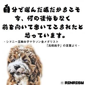 高橋尚子 後悔 道 名言 犬のイラスト