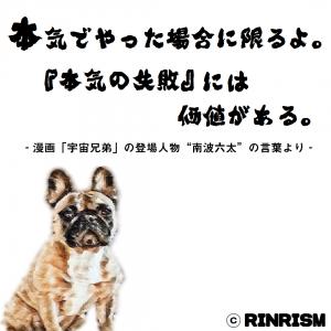 宇宙兄弟 南波六太 本気の失敗 名言 犬のイラスト