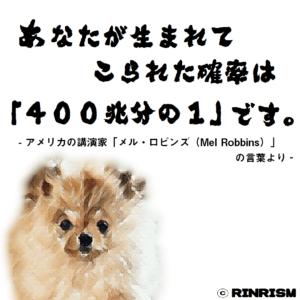 名言 メルロビンズ 400兆分の1 犬のイラスト