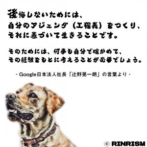 辻野晃一朗 後悔 アジェンダ 記録 名言 犬のイラスト